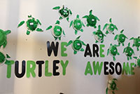 We are Turtley awesome