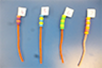 Pipe Cleaner Beads – Can you put the right amount of beads on the pipe cleaners and order them?